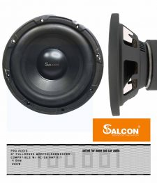 8″ Pro Audio Subwoofer(139)