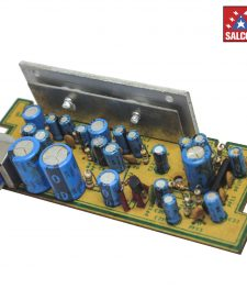 4446 Double IC Car Audio Amp Module