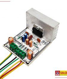 7294 (MONO) Amplifier